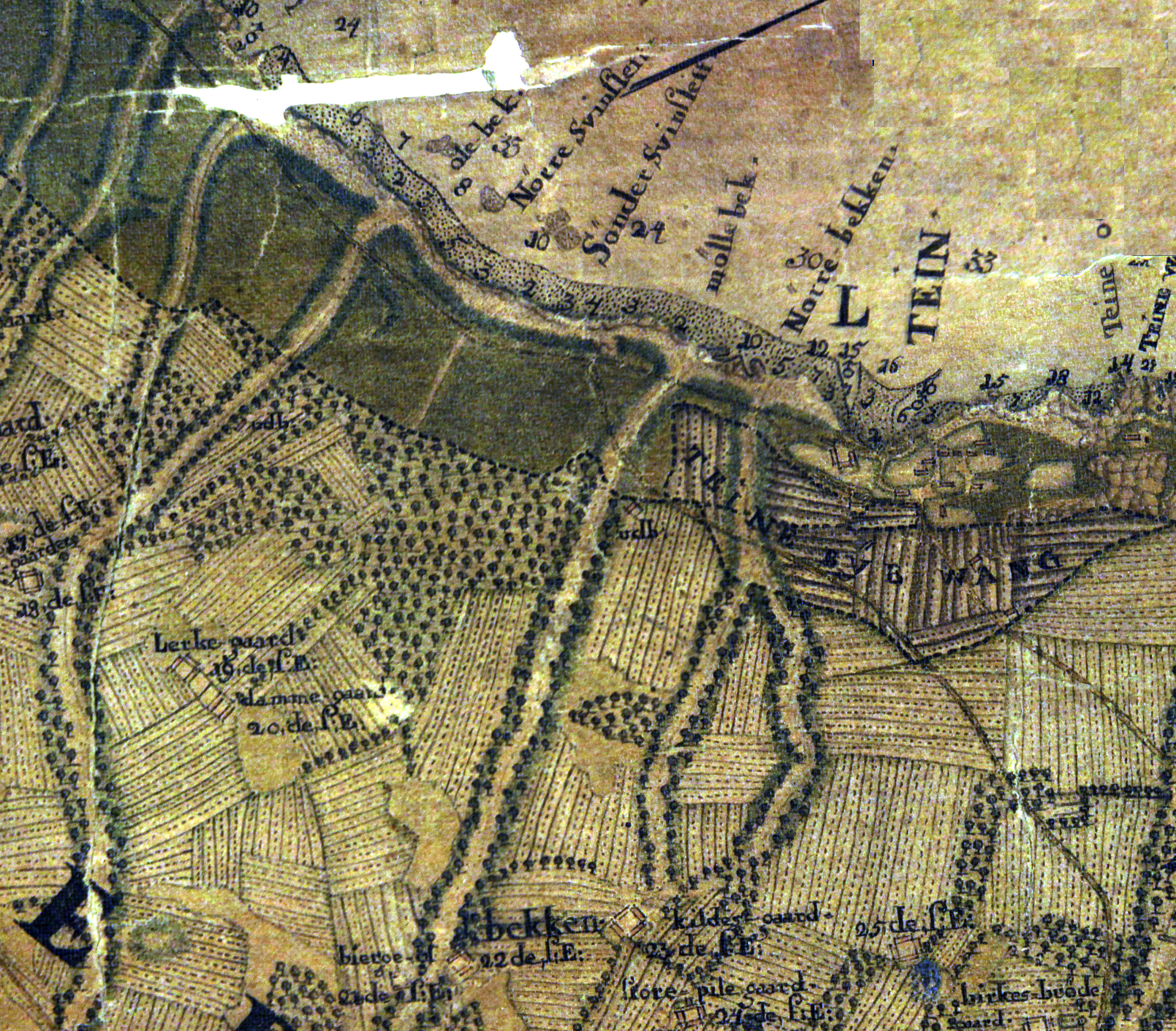 Kongelig biblioteks eksemplar af Hammers kort